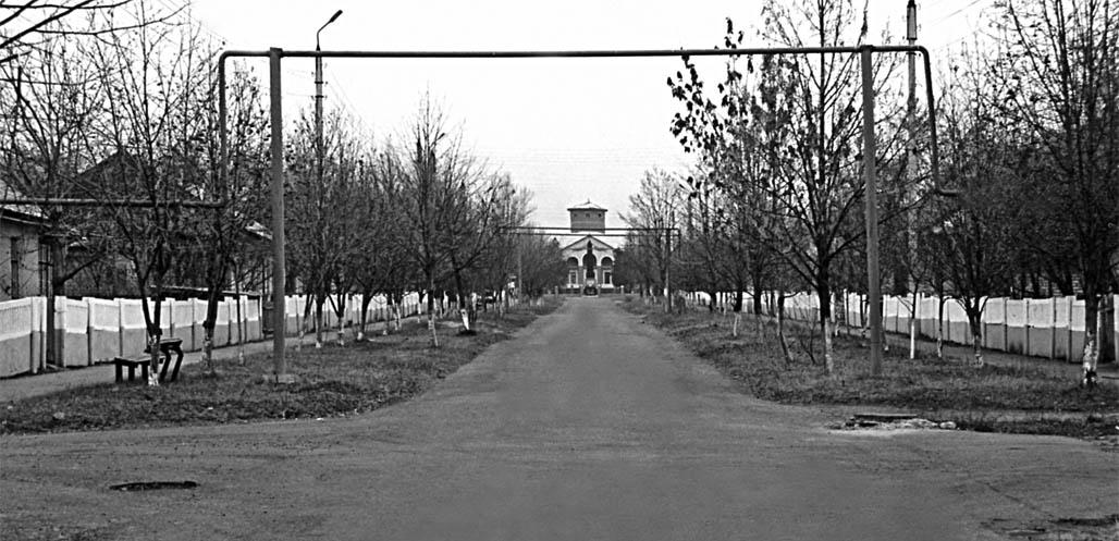 Донецьке