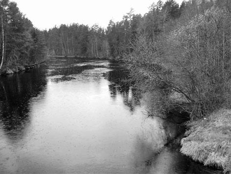 Іршанське водосховище
